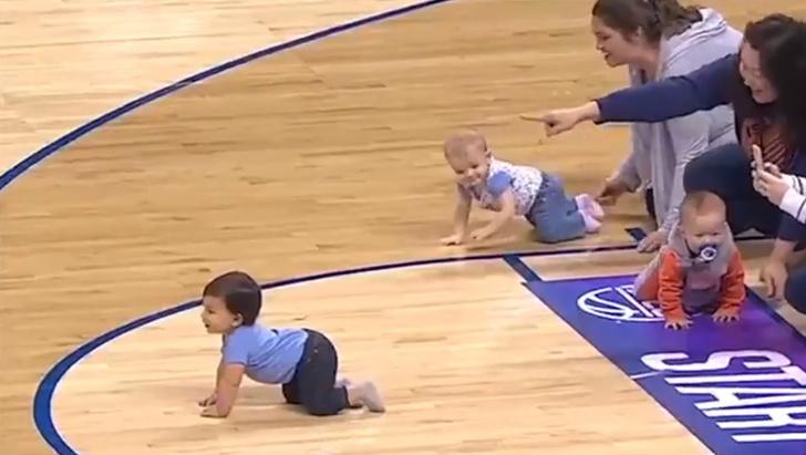 Фото №1 - Гонка младенцев с драматичным финишем (видео)