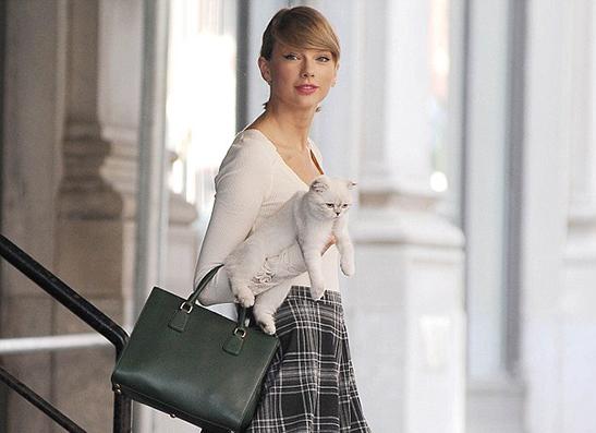 Фото №1 - Дама с кошкой: Тейлор Свифт знает, как стать иконой стиля
