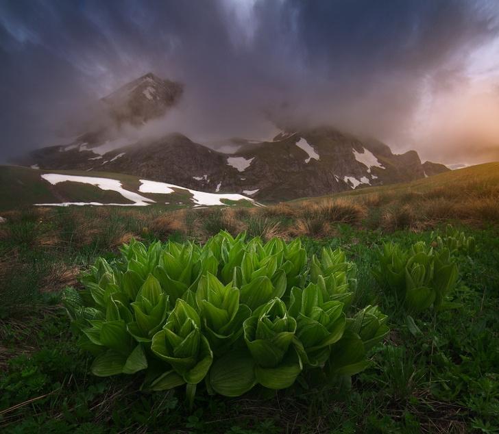 Фото №5 - Стартует VI Фотоконкурс РГО «Самая красивая страна»