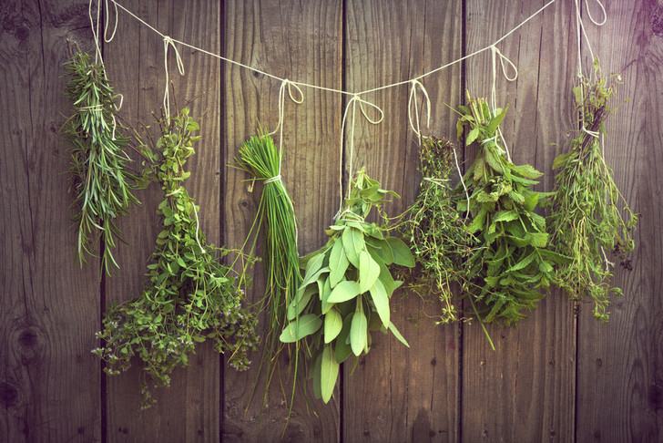 Фото №2 - Лечебные травы: как правильно собирать и применять