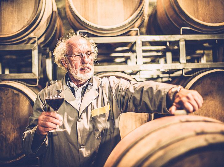 Фото №8 - Вино с приставкой «bio»: кто ввел тренд на биодинамические вина и где их искать