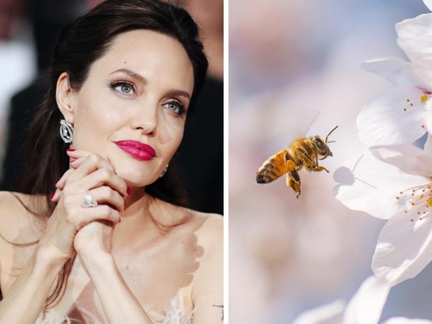 Фото №1 - «От женщин пчелам»: Guerlain запускает программу, которая расширит права женщин