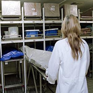 Фото №1 - Австралийские паталогоанатомы требуют просторных моргов