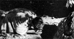 Фото №3 - В джунглях древнего Вайнада