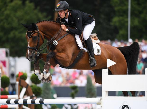 Фото №4 - Королевский спорт: что нужно знать о верховой езде