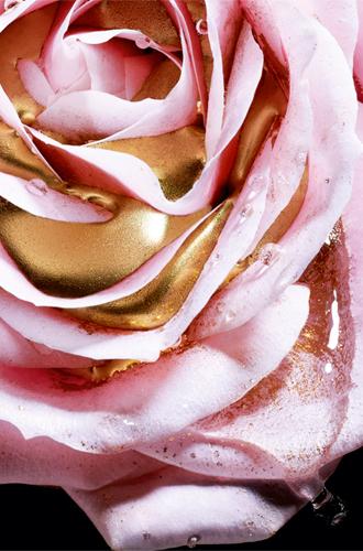 Фото №4 - Красота по-французски: маска-сыворотка с розовыми жемчужинами от Lancome