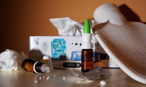 Фото №1 - В Петербурге растет заболеваемость гриппом. Как его правильно лечить, объяснил эпидемиолог
