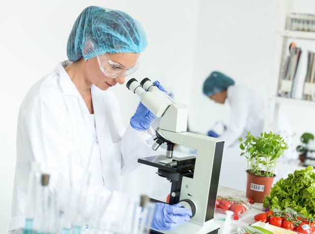 Фото №6 - Что нужно знать о настоящих органических продуктах (и о том, как их вычислить)