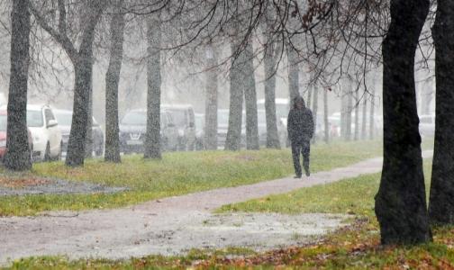 Фото №1 - Психотерапевт: Если осенью опускаются руки, обратитесь к врачу