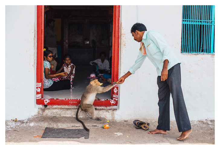 Фото №6 - Личный опыт: как уехать в Индию, чтобы помогать больным и бездомным