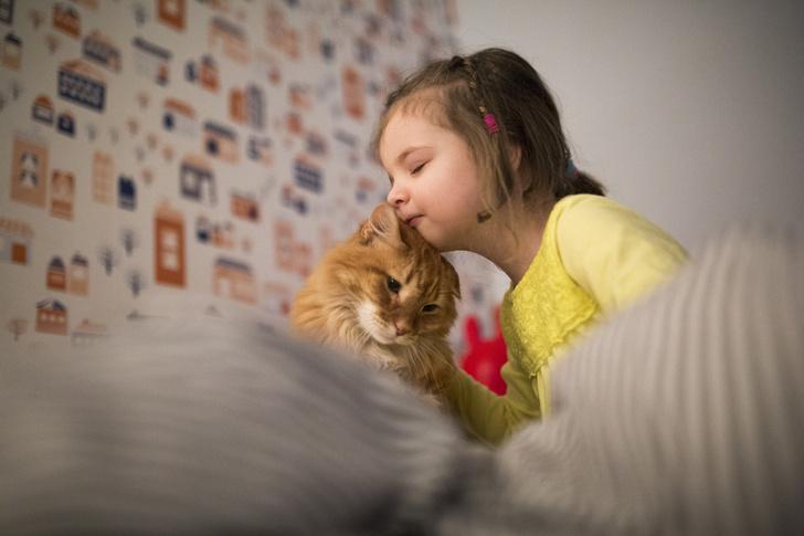 Фото №3 - 24 кошки, которые удивили своими геройскими поступками