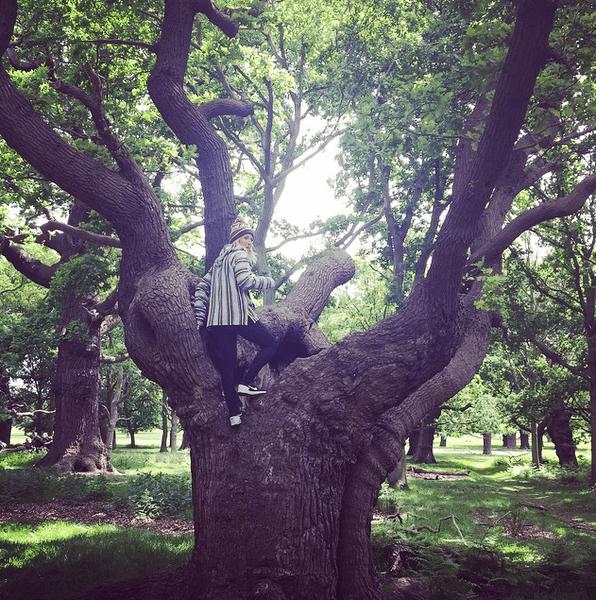 Фото №21 - Звездный Instagram: Сказки леса