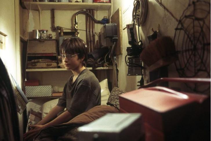 Фото №1 - «Гарри Поттер»: представим, что Пятый из «Академии Амбрелла» стал главным героем ✨
