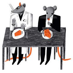 Фото №1 - Правда ли, что мыши очень любят сыр?