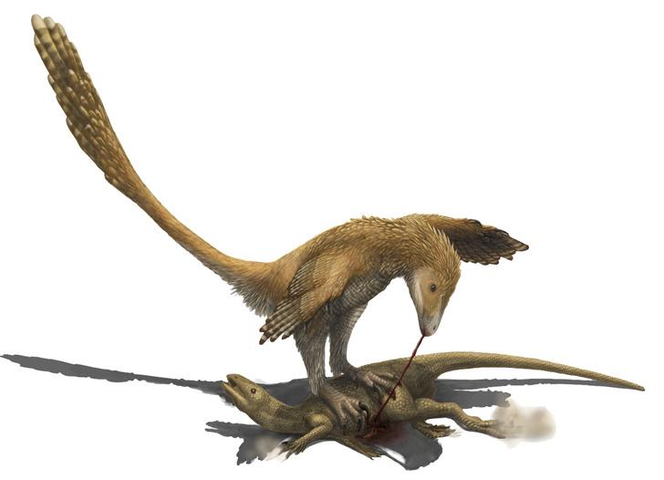 Оперенный динозавр дейноних кромсает добычу