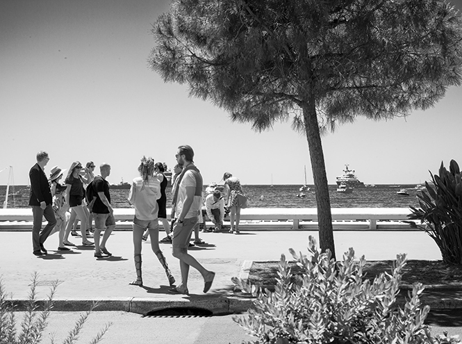 Фото №2 - Каннский фестиваль-2015: как живет город