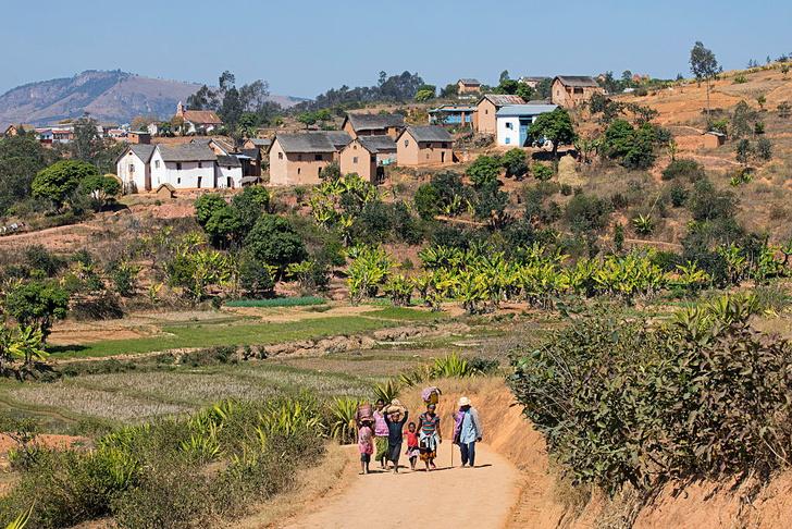 Фото №4 - Крупнейший остров-государство: путешествие на Мадагаскар