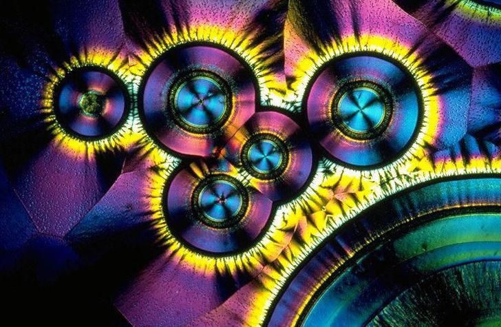 Фото №2 - Витаминоз: пятый элемент