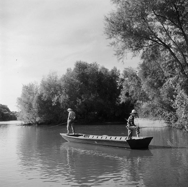 Фото №1 - Рыбалка на Миссисипи