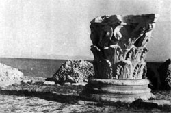 Фото №4 - Карфаген не должен быть разрушен
