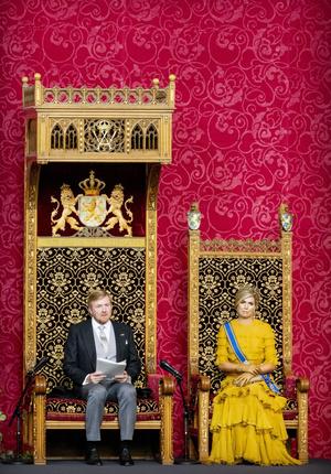 Фото №5 - Что особенного в платье Claes Iversen из гардероба нидерландской королевы Максимы и почему оно поменяло цвет?