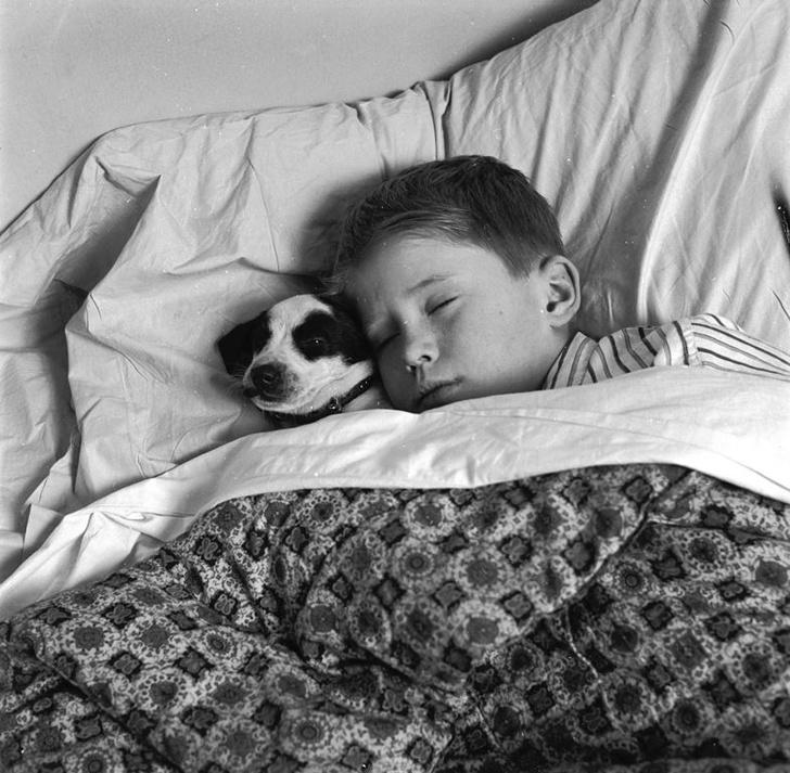 Фото №1 - Продолжительный сон в выходные ухудшает самочувствие