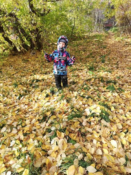Фото №14 - Детский фотоконкурс «Готовимся к осени»: голосуем за лучшие кадры