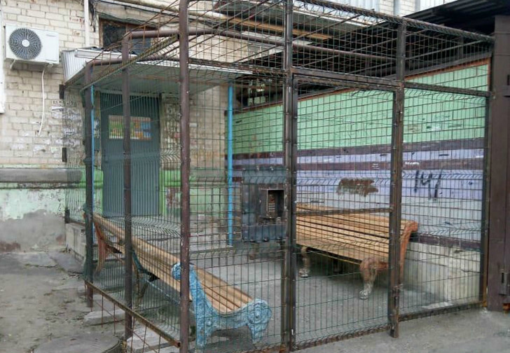 Фото №1 - На Ставрополье нашли «подъезд строгого режима» (фото)