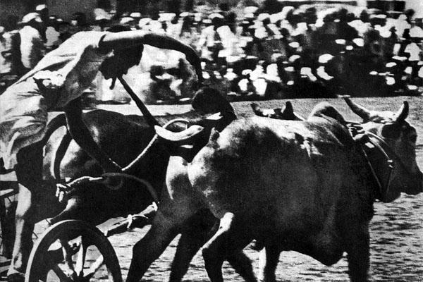 Фото №1 - ...запрячь коня и трепетную лань?