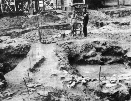 Фото №1 - Пришлите археолога