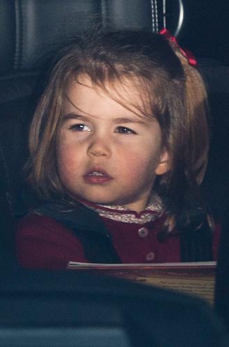 Фото №17 - Ее мини-Величество: феноменальное сходство принцессы Шарлотты с Елизаветой II