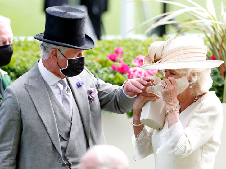 Фото №3 - Вместо тысячи слов: как принц Чарльз проявляет чувства к герцогине Камилле