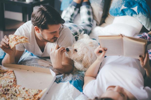 Фото №1 - Кости со стола и другая еда, которой запрещено кормить собак