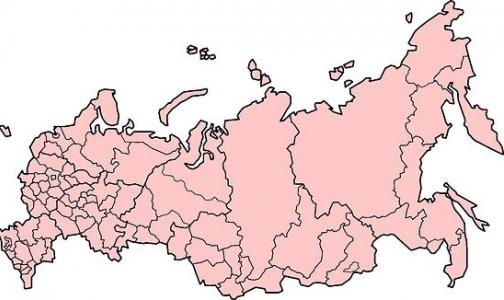 Фото №1 - Росстат посчитал, сколько в России врачей разных специальностей