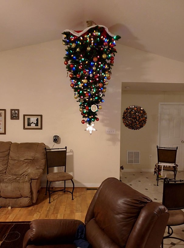 Фото №3 - Как защитить новогоднюю елку от кота: 7 самых хитрых способов с фотоинструкцией