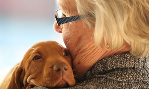 Фото №1 - Минздрав обещает повысить доступность медпомощи для пожилых