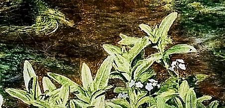 Фото №15 - Культурный код: Викторианские эмодзи