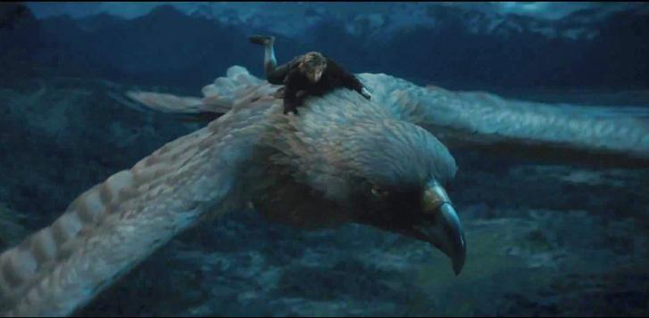 Фото №1 - Как перелетные птицы понимают, куда им лететь?