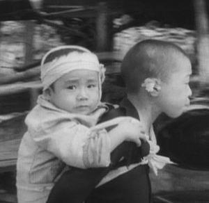 Фото №1 - В шорт-листе Оскара - документальные фильмы о войнах