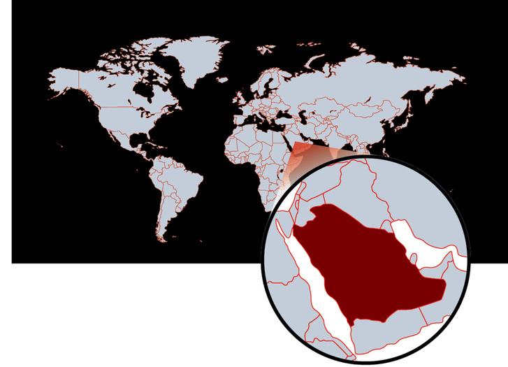 Фото №2 - Аль-Наслаа— скала, удивительным образом разрезанная на две части