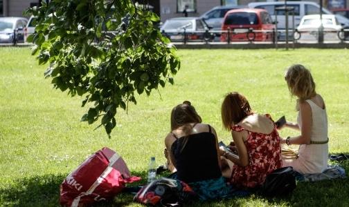 Фото №1 - Петербуржцы страдают от клещей вдвое чаще жителей Ленобласти