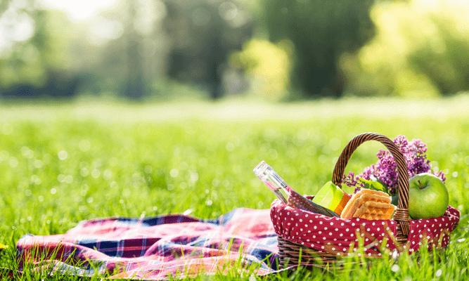 Фото №1 - Тест: Соберись на пикник, а мы порекомендуем хитовый музыкальный альбом 🎵
