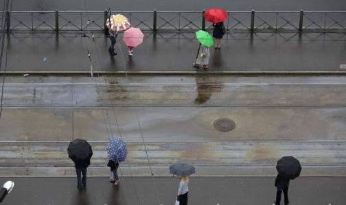 Фото №1 - ЗСД помог Петербургу войти в десятку самых чистых городов России