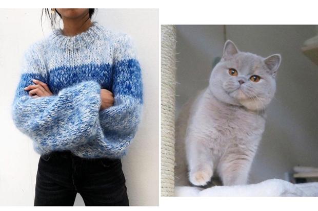 Фото №2 - Как ухаживать за кашемировыми свитерами, чтобы они дольше служили
