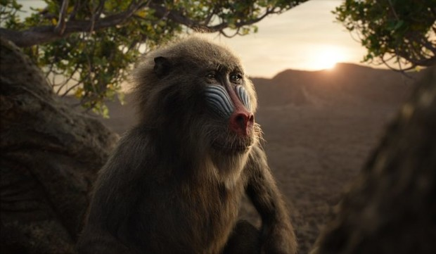Фото №4 - Что посмотреть: 5 фильмов про самых крутых обезьян