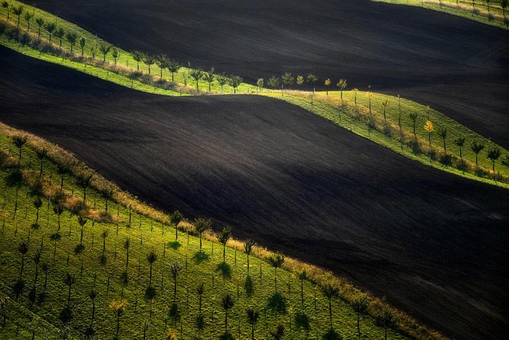 Фото №1 - Один кадр: Чехия