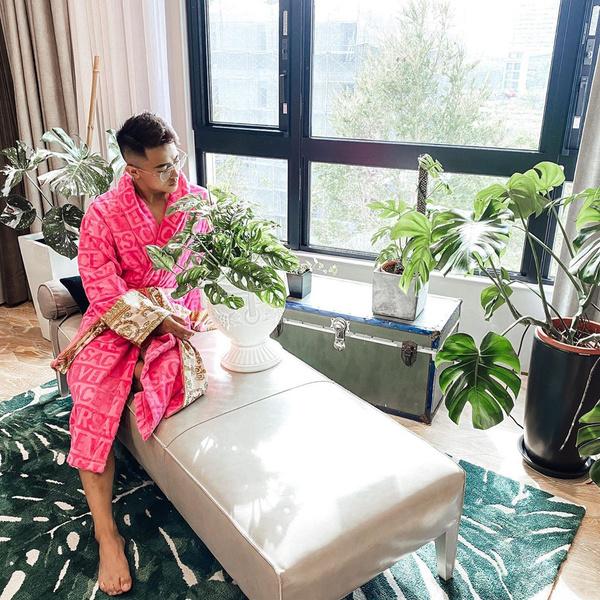 Фото №2 - Дом человека, одержимого комнатными растениями: фото