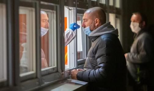 Фото №1 - Петербургский ТФОМС: Число ПЦР-исследований на коронавирус в Петербурге уменьшается, а их доступность растет