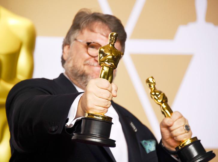 Фото №14 - Сколько стоил «Оскар-2018» (и кто выиграл, а кто проиграл)