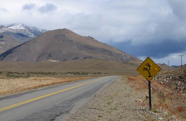 Фото №2 - Наперегонки с ветром Патагонии
